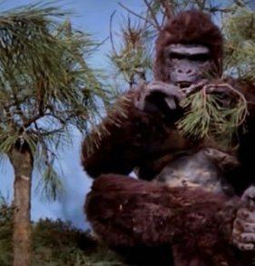 ภาพยนตร์เรื่อง Ape (1976)